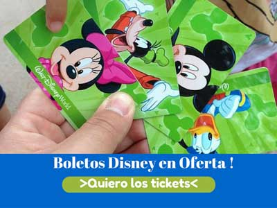 TICKETS PARQUES DISNEY